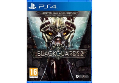 Blackguards 2: Day One Limited Edition (PS4, русские субтитры)